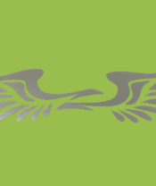 Wing Decal - Silver