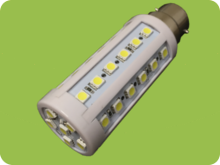 Bulbs & Floodlights - 240V